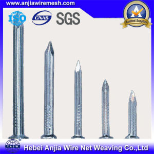 Galvanized Nails Concrete Iron Nails / Roofing Nails pictures & photos