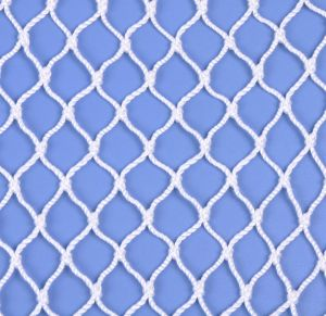 White Colour Polyester Fishing Net pictures & photos