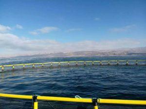 HDPE Pipe Aquaculture Fish Farming Equipment Cage pictures & photos