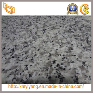 Cheap White Granite Polished Stone Tile for Flooring pictures & photos
