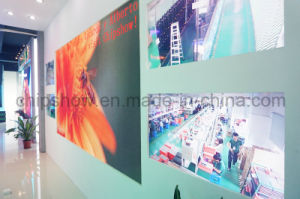 Chipshow HD Small Pixel Indoor Full Color Leopard Series P1.9 LED Panel pictures & photos