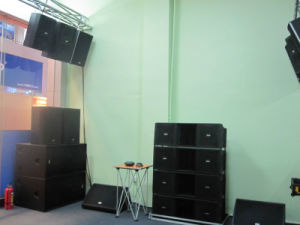 "High Power Dual 18"" Subwoofer for Club (FS-218) pictures & photos"