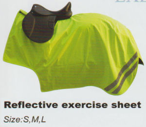 Reflective Exercise Sheet & Reflective Riding Rug