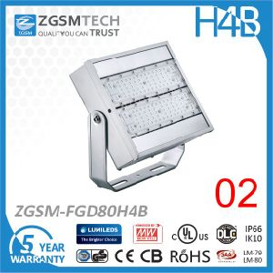 IP66 Waterproof 80W LED Flood Light with Cheap 3030 Chip pictures & photos