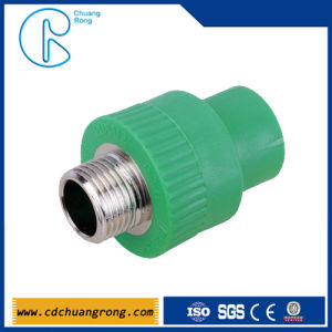 Polythene Pipe Fittings PPR Male Threaded Coupling pictures & photos