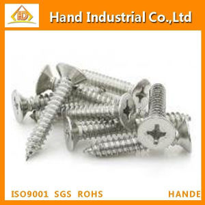 Ss Cross Csk Head Self Drilling Screw pictures & photos