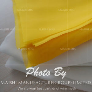 High Quality Low Elongation Screen Printing Mesh pictures & photos
