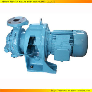 Good Quality 60Hz Self-Priming Sewage Water Pump (RS-997)
