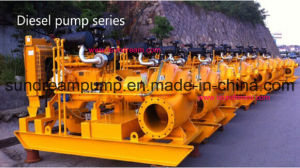 Horizontal Split Case Double Suction Centrifugal Pump pictures & photos