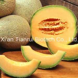 Cantaloupe Juice Powder /Melon Juice Powder /Melon Extract Powder /Hami Melon Powder/Cantaloupe Powder pictures & photos