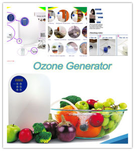 Ozone Generator for Sterilization Odor Elimination Smoke Removal pictures & photos