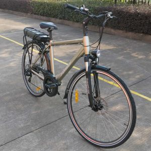 """28"""" Electric Bicycle with Rear Rack Battery (TDB03Z) pictures & photos"""