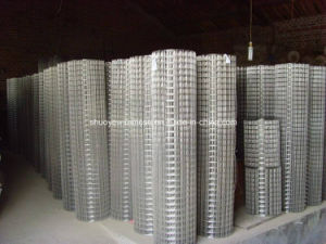 Hot Dipped/Electro Galvanized Welded Wire Mesh pictures & photos