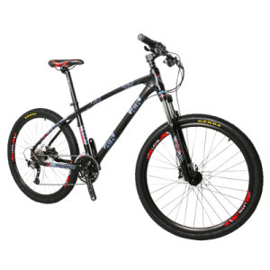 Cheap 24 Inch Mountain Bike pictures & photos