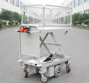 Electric Motorcycle Scissor Lift Table with One Cylinder & Wire Fence