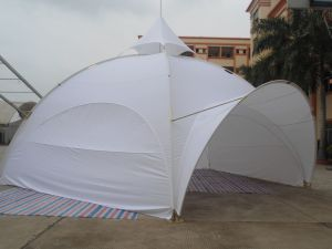 Party Dome Tent pictures & photos