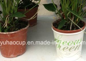Flower Pot Decoration (YH-L251) pictures & photos