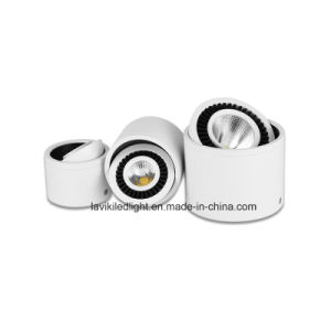 Surface Mounted LED COB Downlight Angled Spot Light with 3-20W for Ceiling Lighting