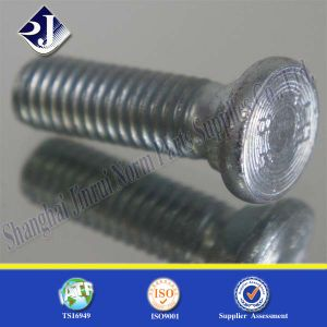Flat Head Square Neck Bolt pictures & photos