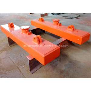 Industrial Electric Plate Lifting Magnet for Gantry Crane pictures & photos