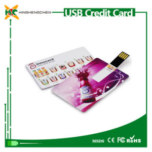 Business USB Flash Card USB Flash Drive pictures & photos