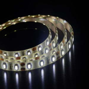 IP65 PU Dripping Glue Waterproof SMD3528 4.8W/M LED Strip Light pictures & photos
