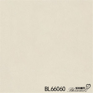 Building Material White Stone Floor Tile / Flooring Tile (600X600mm) pictures & photos