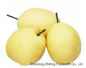 Fresh Ya Pear with High Exporting Quality in 2017 pictures & photos