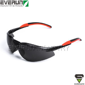 Eye Guard Funny Safety Glasses (ER9331A) pictures & photos