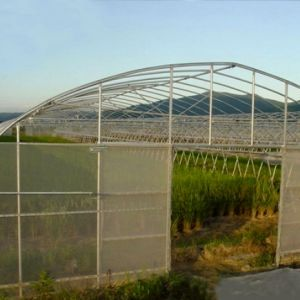 The Newest Agricultural Plastic Tunnel Film Green House for Sale pictures & photos