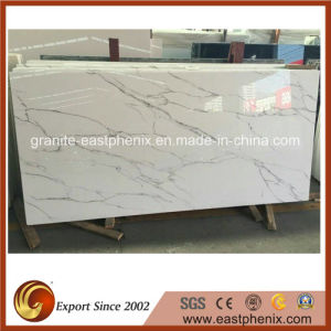 Hot Sale White Marble Tiles for Wall/Shower Tiles pictures & photos