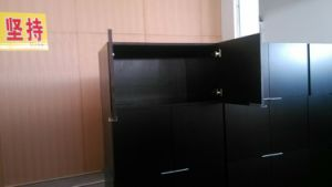 Lift up Glass Cabinets Doors pictures & photos