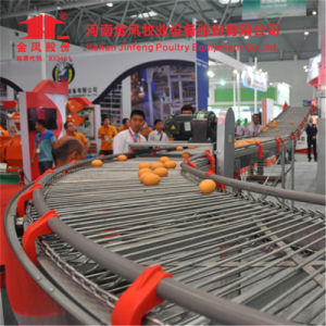 a Type Chicken Layer Cage with Automatic Feeding System pictures & photos