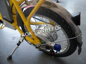 250W Brushless Motor Electric Bike with LED Headlight (FB-008) pictures & photos
