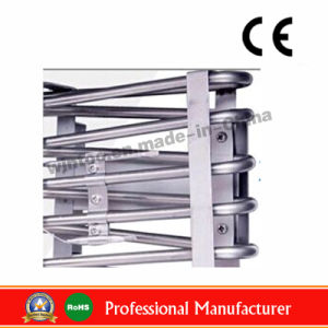 Stainless Steel Electric Deep Flat Chicken Fryer with Drain Taps Ce Certificate and RoHS Certificate (WF-101V) pictures & photos