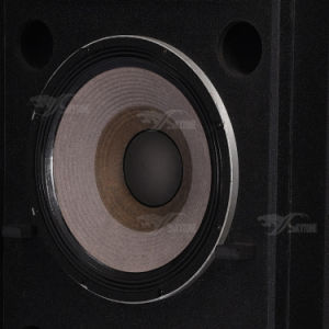 "Srx725 Dual 15"" High Power Professional Speaker pictures & photos"