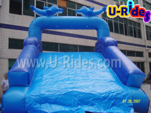 Amusement Water Park Equipment in Attractions pictures & photos