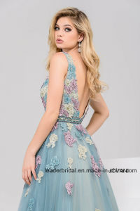 V-Neck Lace Tulle Prom Gowns Colorful Floral Evening Formal Dresses Z5022 pictures & photos