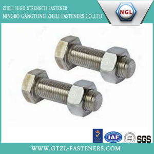316 Stainless Steel Hex Bolt pictures & photos