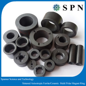 Permanent Ferrite Multipole Magnet Rings for DC Motor pictures & photos