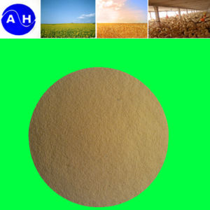 Plant Nutrient Fertilizer Multi-Element Chelate pictures & photos