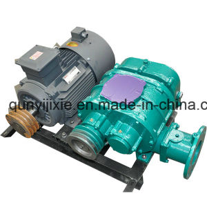 China Made Roots Vacuum Pump for Vacuum Packing pictures & photos