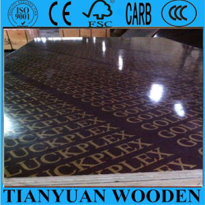 Goldluckplex Film Faced Plywood with Logo for Concrete Formwork pictures & photos