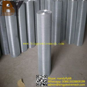 Hot-Dipped Galvanized Welded Wire Mesh Roll pictures & photos