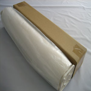 260GSM Polyester Glossy for Ecosolvent (SO-PG260) pictures & photos