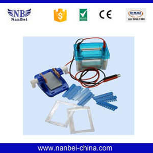 Double Vertical Gel Electrophoresis Apparatus with Reliable Quality pictures & photos