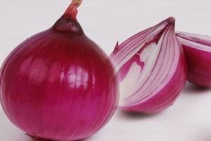 Export High Quality New Crop Red Onion pictures & photos