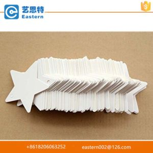 Star Shape Paper Hang Tag pictures & photos