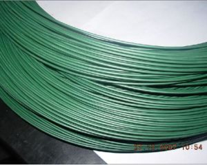 Specialized PVC Coated Wire/PVC Coated Tie Wire (XM-07) pictures & photos