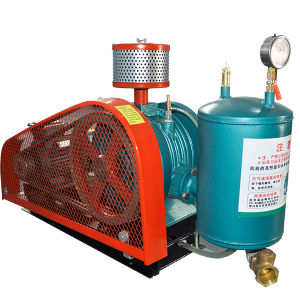 Rotary Positive Blower for Hospital and Laboratory Waste Products pictures & photos